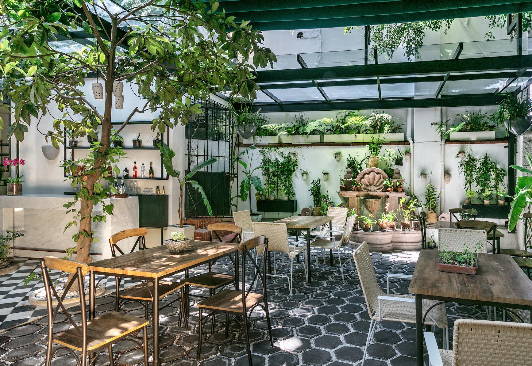 Orchid House: El secreto mejor guardado de Polanco