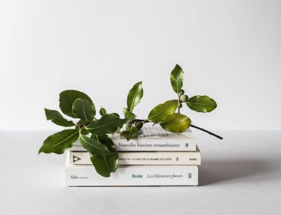 Podcasts y libros para aumentar el amor propio